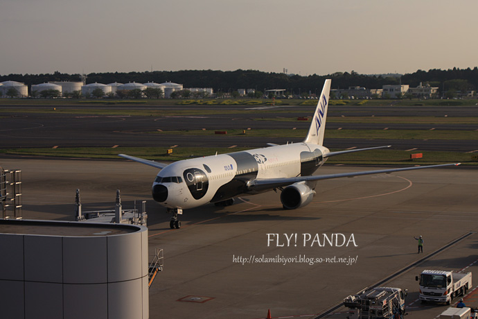 FLY! PANDA