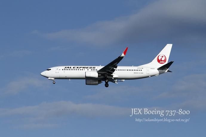 JEX B737-800